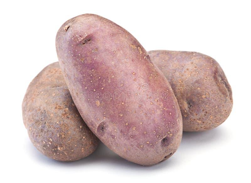 Download Raw potato stock photo. Image of brown, image, white - 18350818