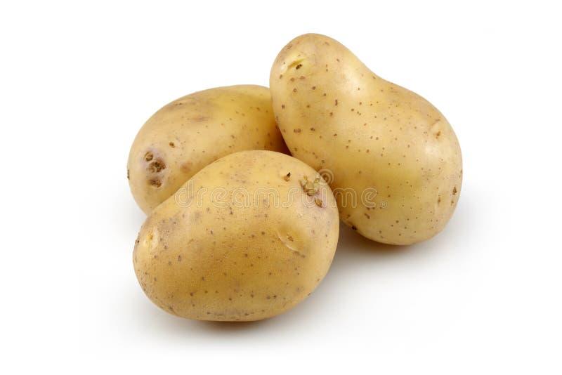 Raw Potato. Isolated on white