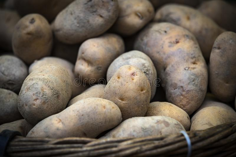 Raw potatoes in baskets on the market. Close up shot royalty free stock image