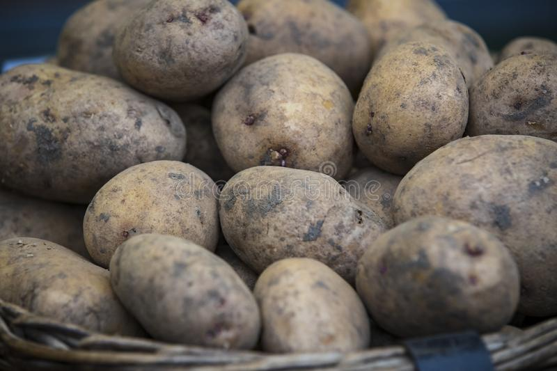Raw potatoes in baskets on the market. Close up shot royalty free stock images
