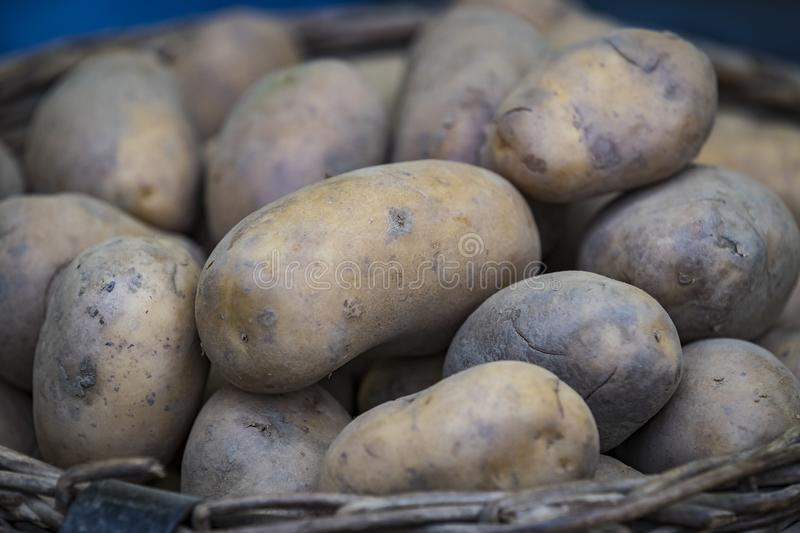 Raw potatoes in baskets on the market. Close up shot stock images