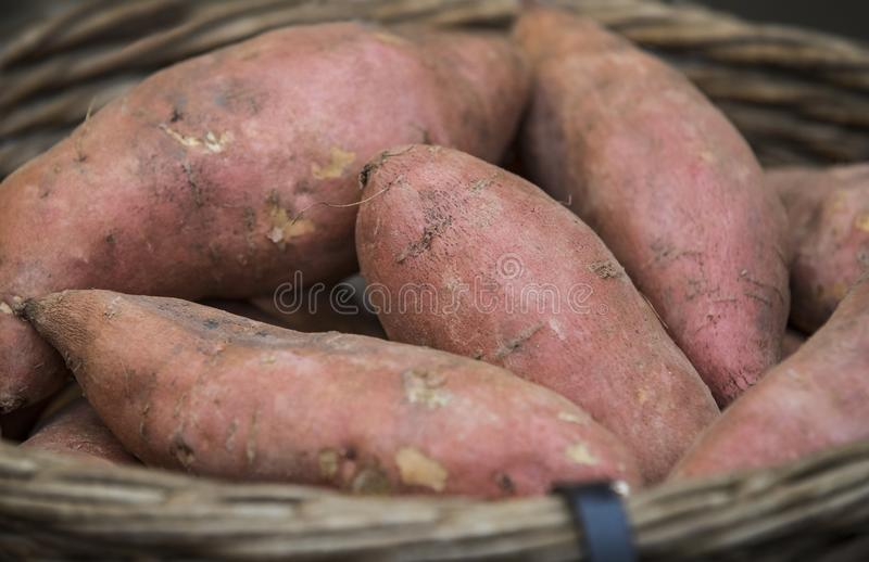Raw potatoes in baskets on the market. Close up shot royalty free stock photo