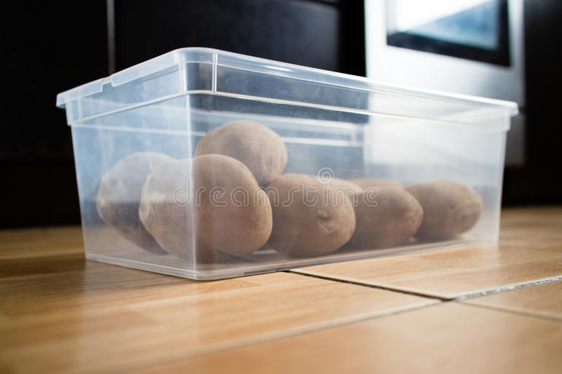 Raw potatoes in a plastic container on floor royalty free stock photos