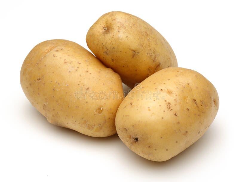 Download Raw potatoes stock image. Image of freshness, eating - 61790721
