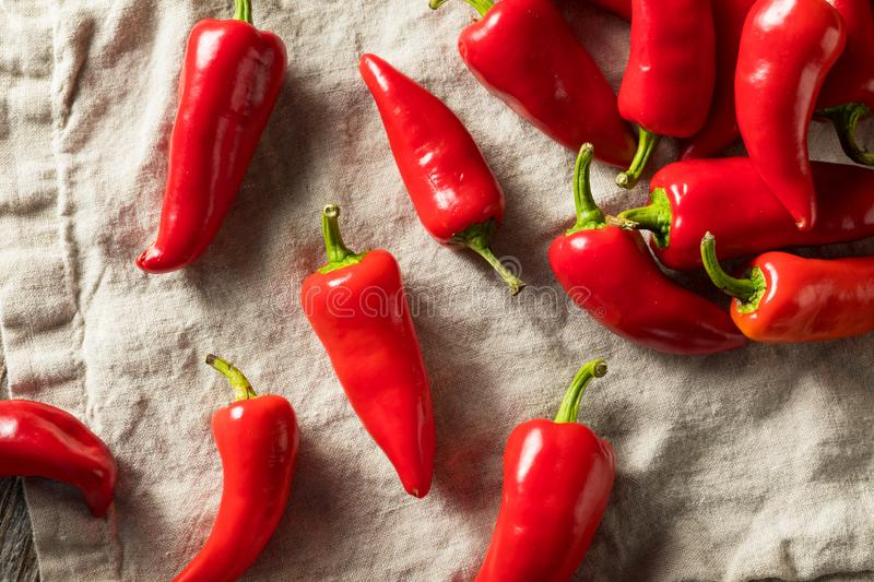 Raw Red Organic Fresno Peppers. REady to Cook royalty free stock photography