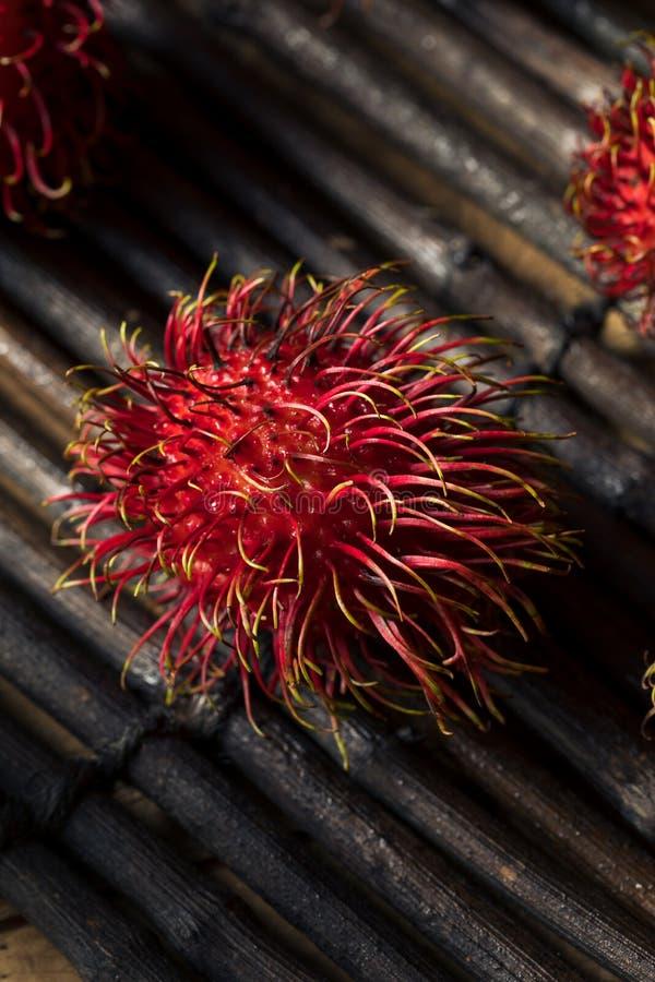 Raw Red Organic Rambutan Fruit royalty free stock image