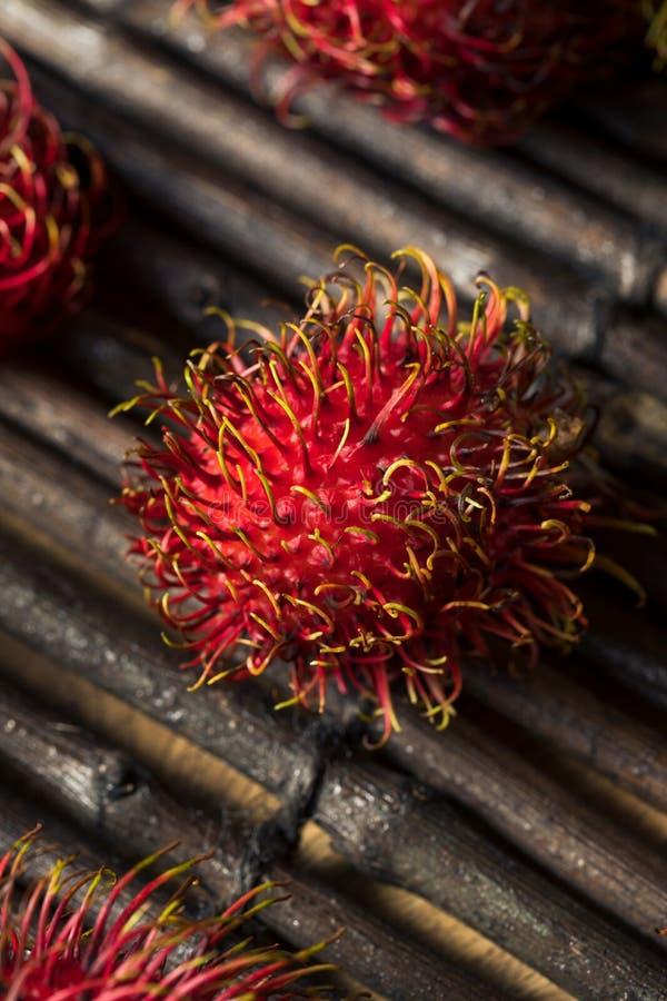 Raw Red Organic Rambutan Fruit. Ready to Eat stock image