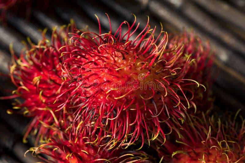 Raw Red Organic Rambutan Fruit. Ready to Eat royalty free stock images