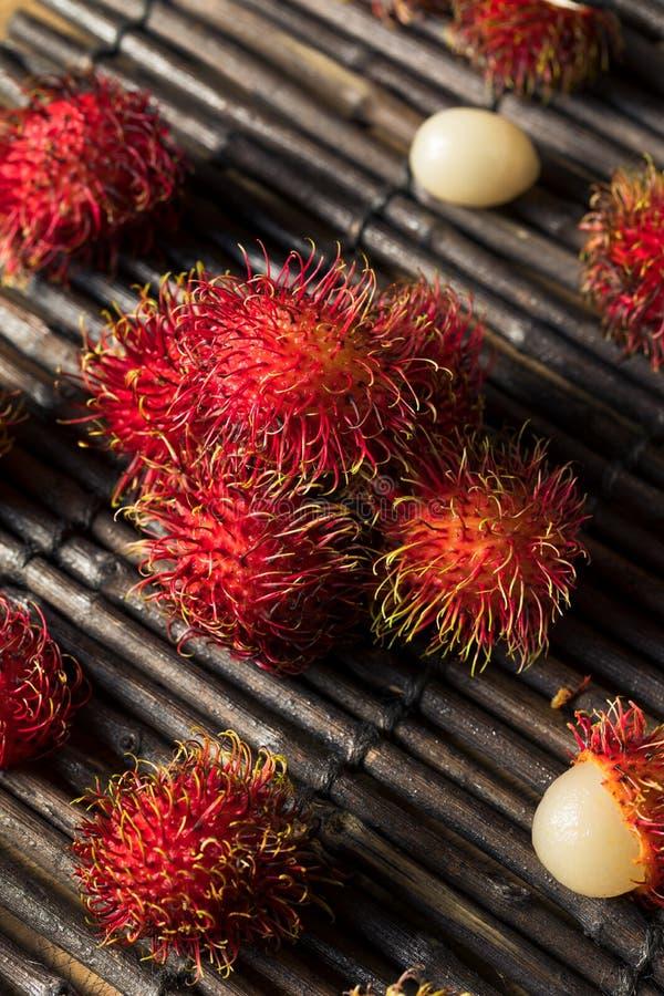 Raw Red Organic Rambutan Fruit stock photography
