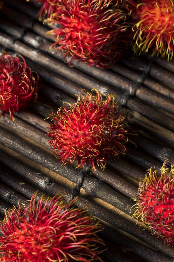 Raw Red Organic Rambutan Fruit. Ready to Eat stock photography
