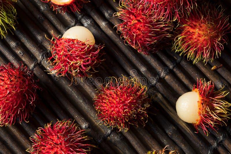 Raw Red Organic Rambutan Fruit. Ready to Eat royalty free stock photos