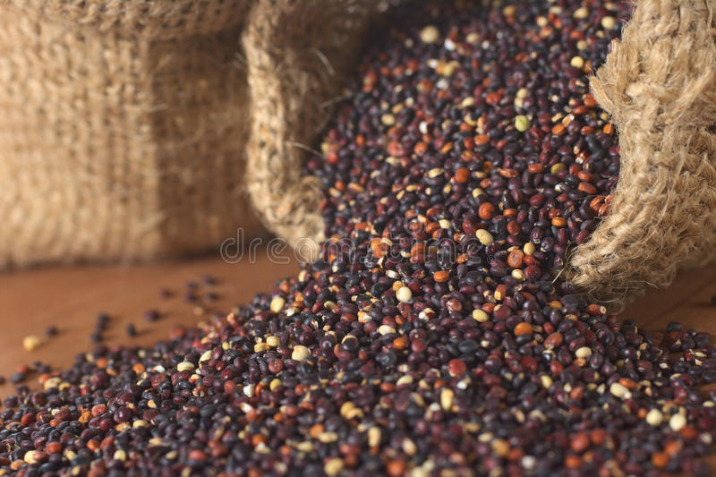 Download Raw Red Quinoa Grains stock photo. Image of focus, crop - 19891936