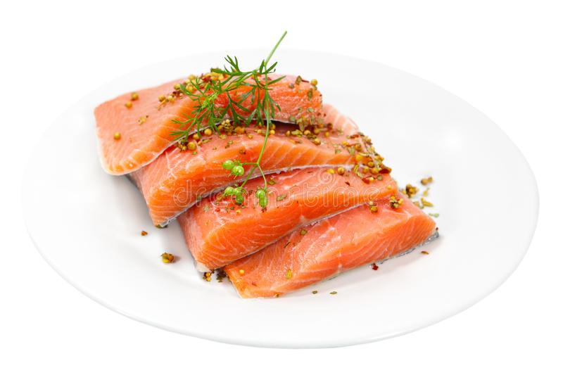 Raw Salmon. Fillet with spices on plate