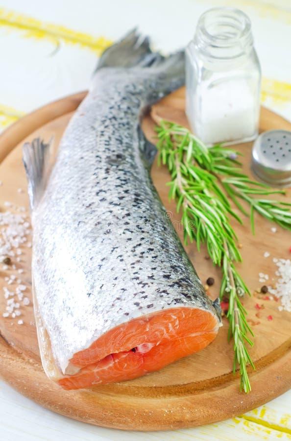 Free Raw Salmon Royalty Free Stock Photography - 34636077
