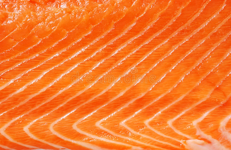 Download Raw salmon background stock image. Image of gourmet, fish - 28122915