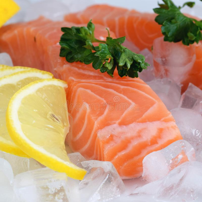 Raw salmon filet on the crushed ice stock photography