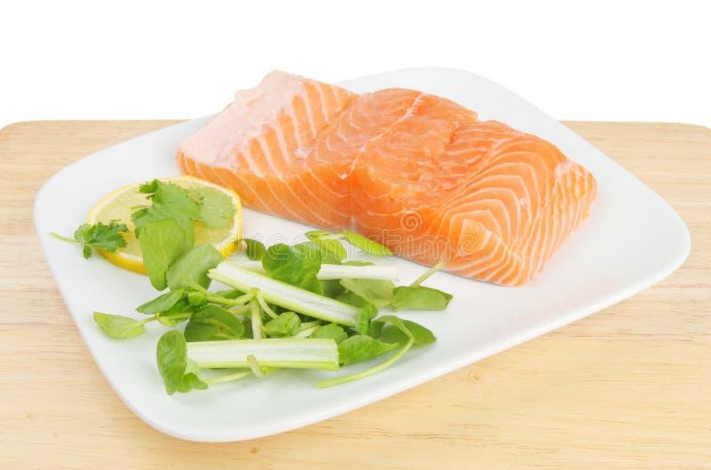 Download Raw salmon fillet stock image. Image of salad, spring - 13217947