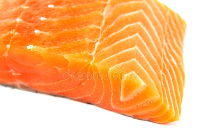 Raw salmon fish isolated on white background.  stock photography