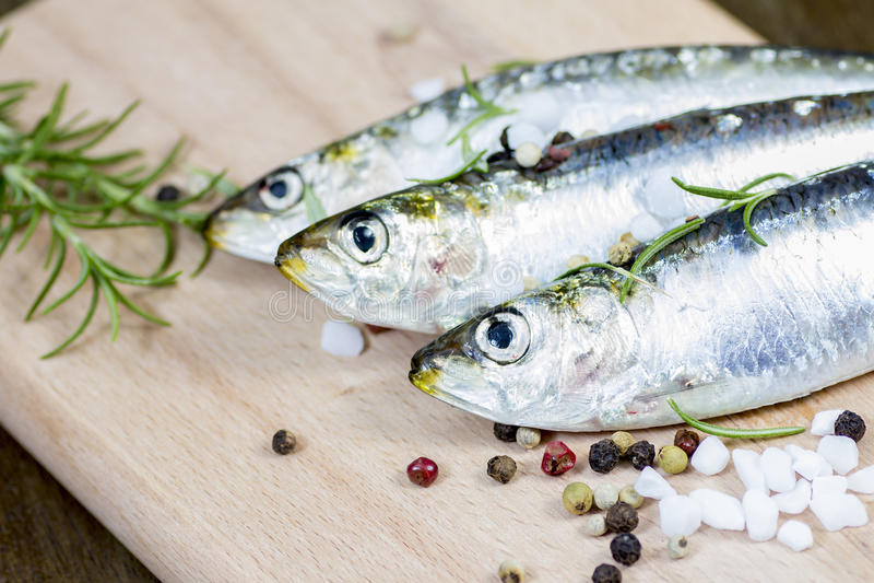 Raw sardine with spices. Studio shot of raw sardine with spices stock image