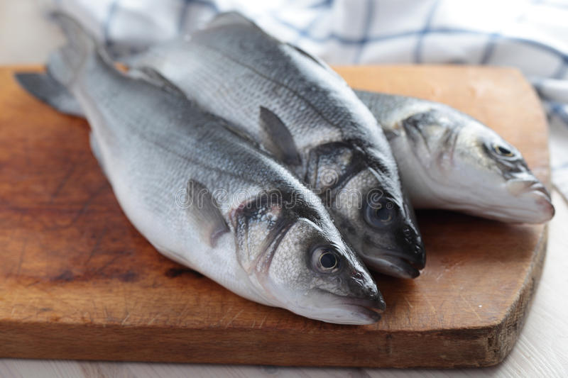 Raw sea bass royalty free stock photos