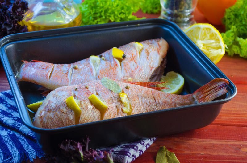 Raw sea bass in a baking. Raw sea bass in a pan ready for baking stock images