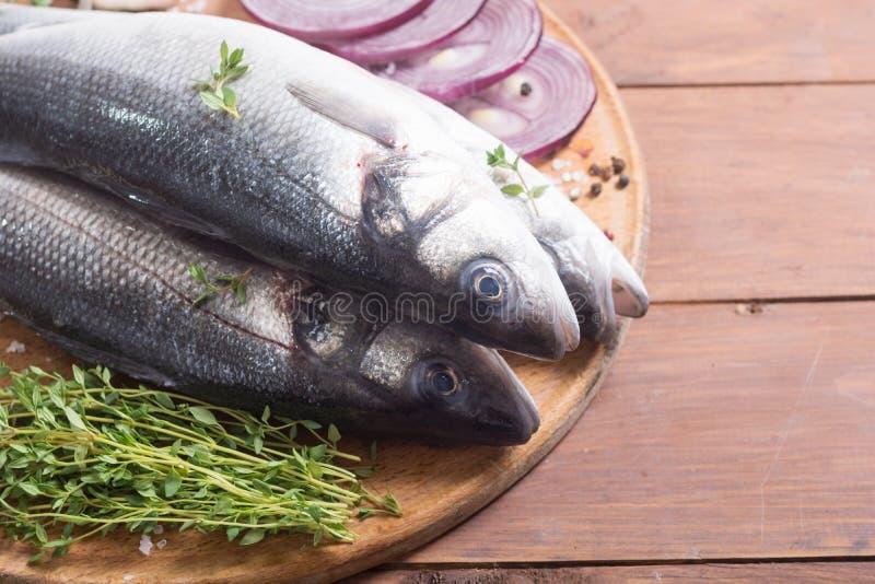 Raw sea bass fish. Cooking fresh seabass royalty free stock photos