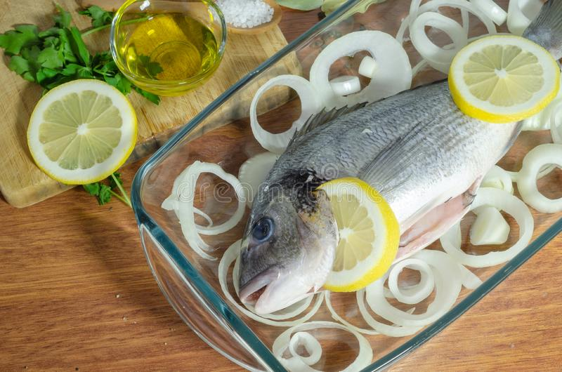 Raw sea bass fish . Sea bass ready to be cooked stock photography