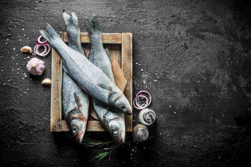 Raw sea bass fish on tray with spices, garlic and chopped onions royalty free stock photo