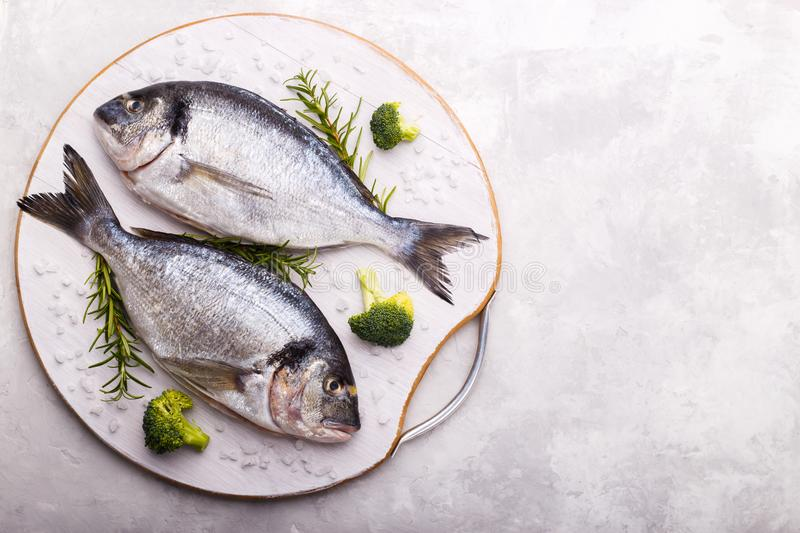 Raw sea bream fish. With rosemary and broccoli on white gray stone background.Healthy food concept, flat lay, copy space royalty free stock image