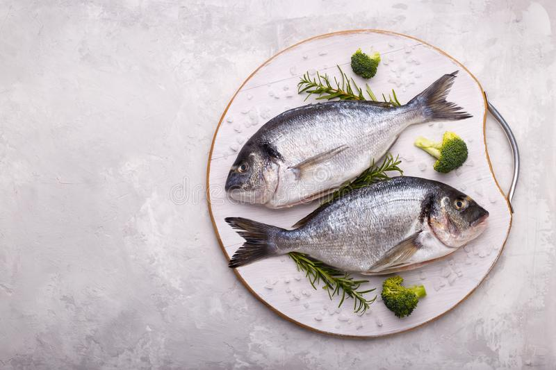 Raw sea bream fish. With rosemary and broccoli on white gray stone background.Healthy food concept, top view, copy space royalty free stock photography
