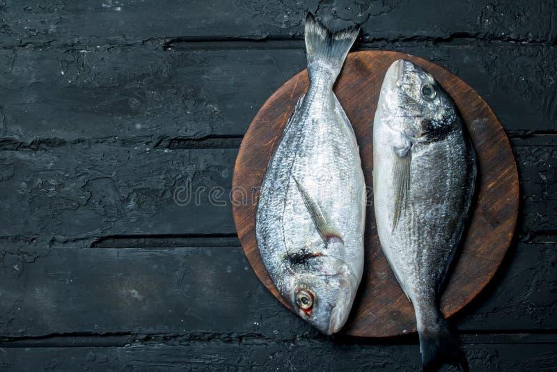 Raw sea fish dorado on a cutting Board. On a black rustic background stock photos