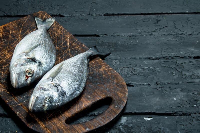 Raw sea fish dorado on a cutting Board. On a black rustic background royalty free stock photo