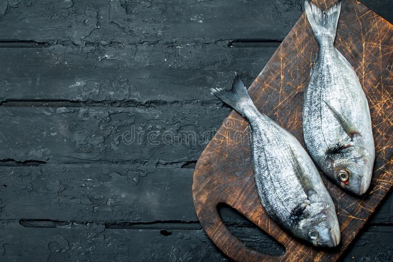 Raw sea fish dorado on a cutting Board. On a black rustic background royalty free stock images