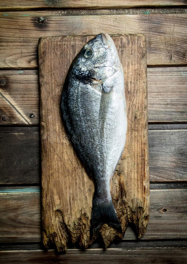 Raw sea fish dorado on a cutting Board. On a wooden background royalty free stock images