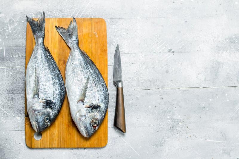 Raw sea fish dorado on a cutting Board. On a rustic background stock photos