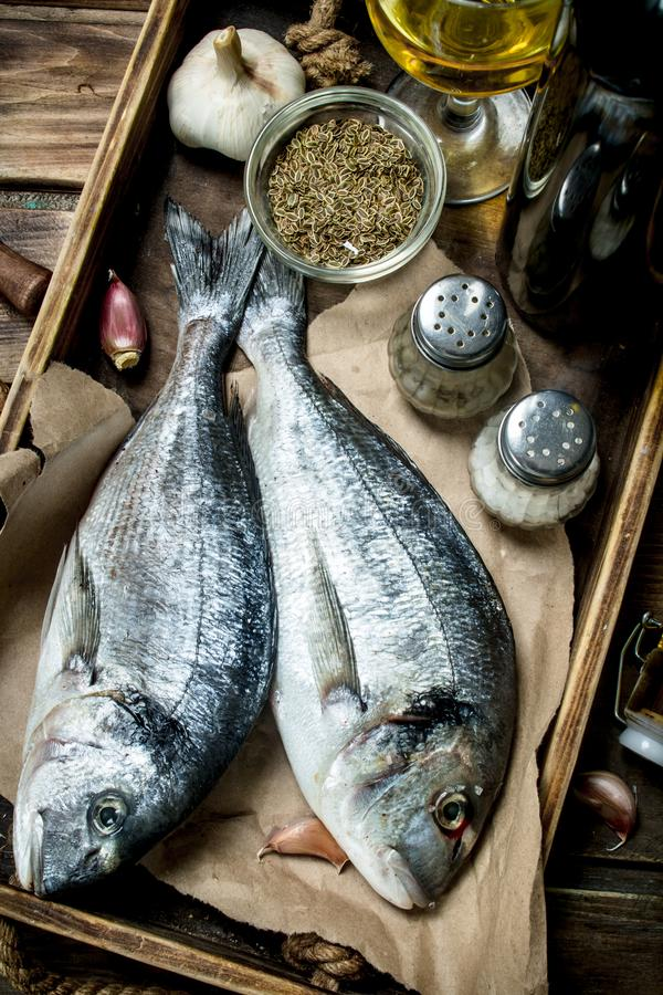 Raw sea fish dorado with spices and white wine. On a wooden background stock photos