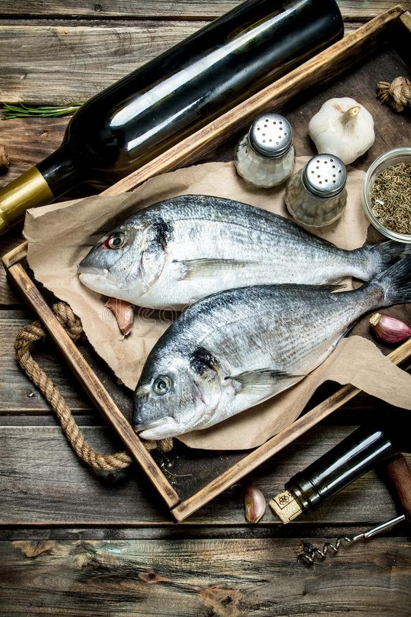 Raw sea fish dorado with spices and white wine. On a wooden background royalty free stock images