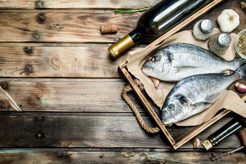Raw sea fish dorado with spices and white wine. On a wooden background stock images