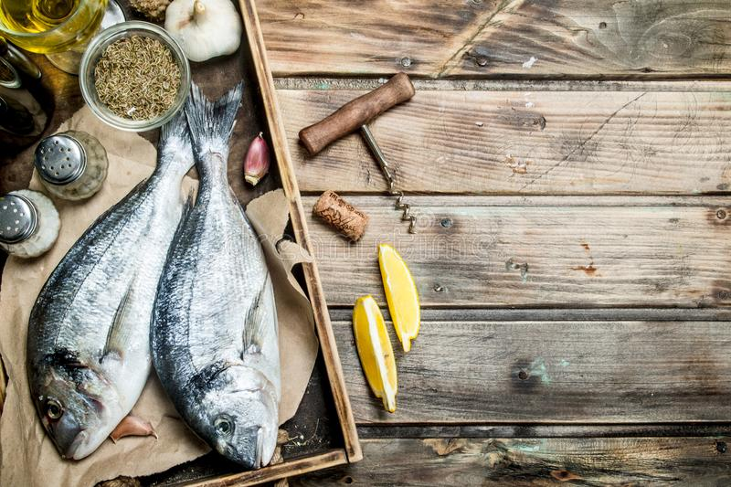 Raw sea fish dorado with spices and white wine. On a wooden background stock photography