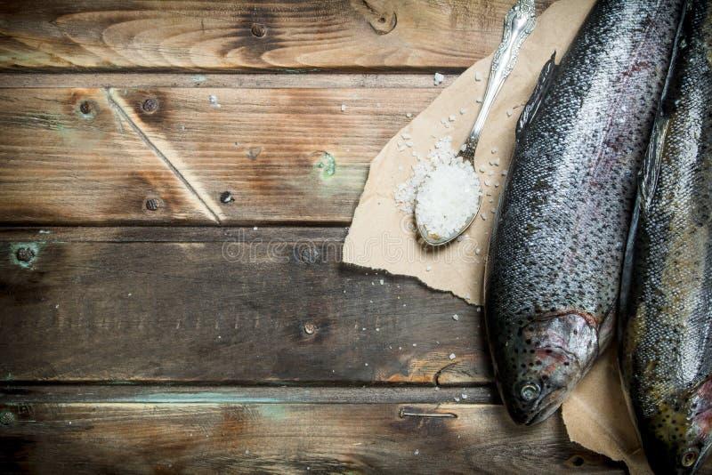 Raw sea fish salmon with salt royalty free stock photo