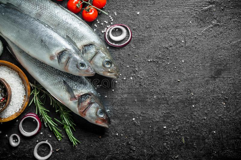 Raw seabass fish with tomatoes, rosemary and onion rings. On black rustic background royalty free stock photos