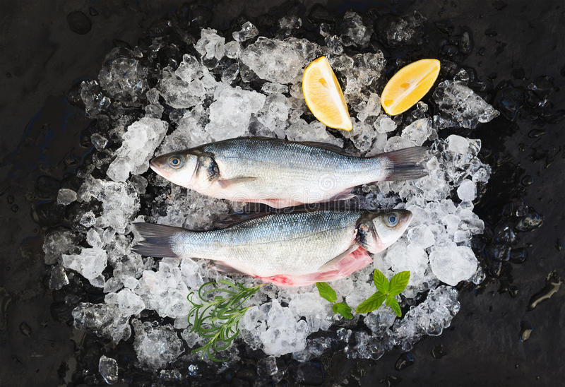 Raw seabass with lemon and rosemary on chipped ice over dark stone backdrop. Top view, horizontal stock image