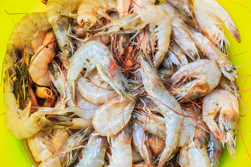 Raw shrimps. Waiting for cooking royalty free stock image