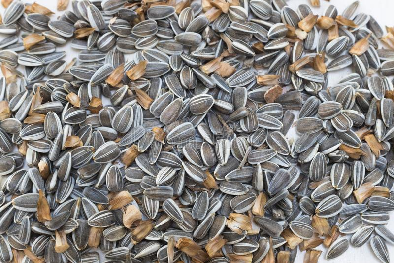 Raw sunflower seeds close up stock photos