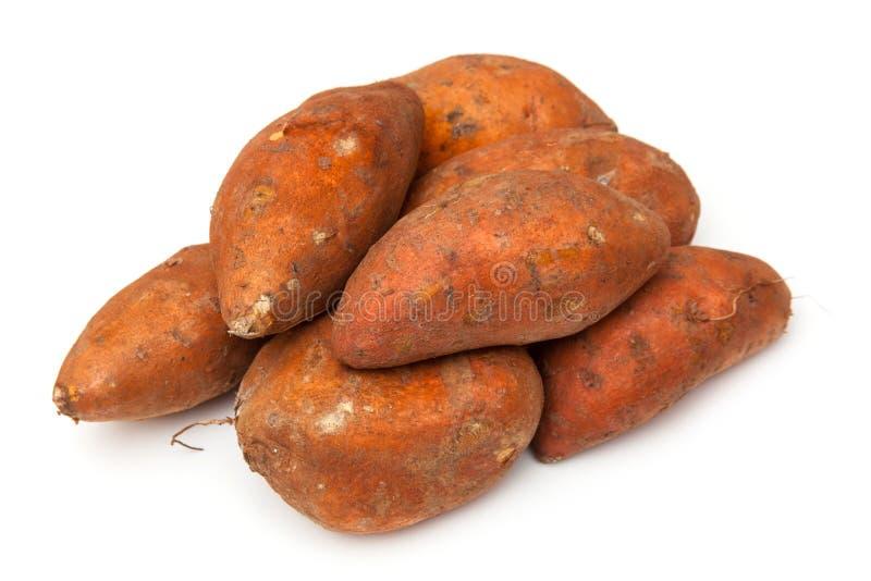 Raw sweet potatoes royalty free stock image
