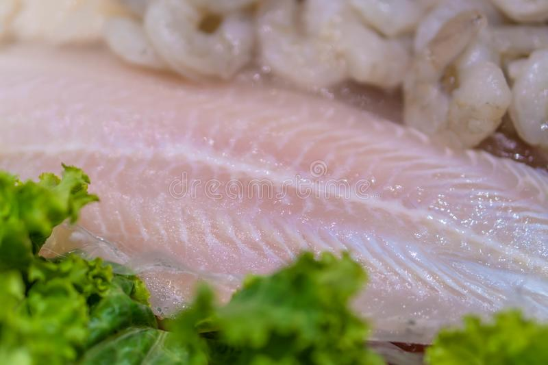 Raw tilapia fish fillet with thyme ready for cooking stock photos