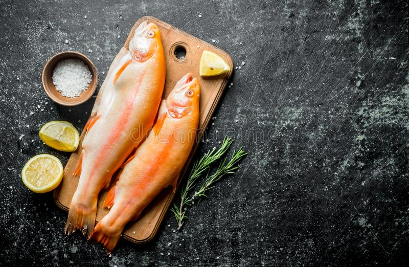 Raw trout fish with sliced lemon, rosemary and salt. On dark rustic background stock photography