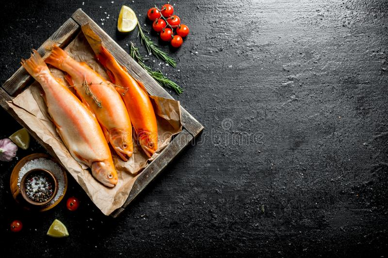 Raw trout fish on tray with tomatoes and rosemary. On black rustic background royalty free stock images