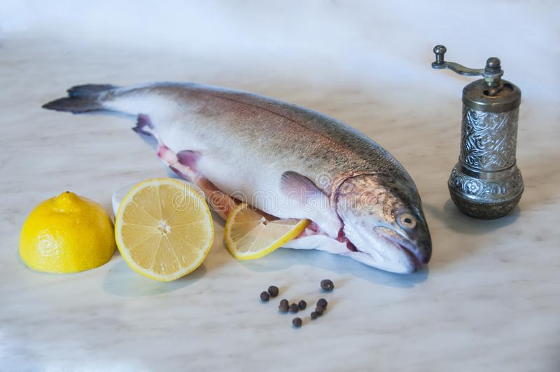 Raw trout with slices of lemon, pepper peas and pepper mill on a marble background. Fresh fish dish. Food preparation. royalty free stock photography