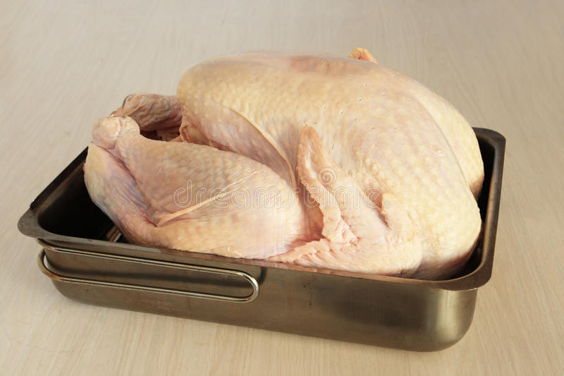 Raw turkey in pan. Raw turkey in a pan ready for stuffing or baking royalty free stock photos